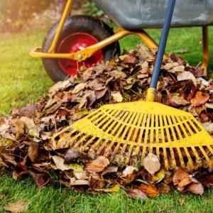 bluffdale-utah-lawn-and-yard-maintenance