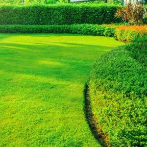 cottonwood-heights-utah-lawn-and-yard-maintenance