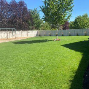 murray-utah-lawn-and-yard-maintenance