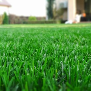 salt-lake-city-utah-lawn-and-yard-maintenance