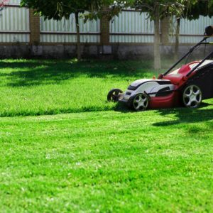 west-jordan-utah-lawn-and-yard-maintenance